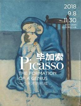 毕加索·一个天才的形成